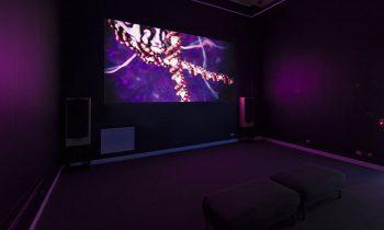 Morbis Artis: Diseases of the Arts – see virtual tour, part 2.