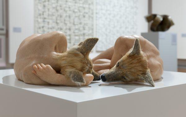 Sam Jinks, 'Unsettled Dogs' (2012).