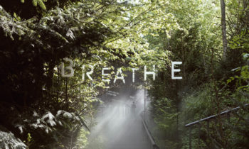 Breathe Earth Collective: Hybrid Forests in built environments