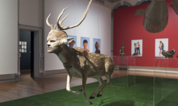 Beyond taxidermy: Kate Clark & Julia deVille